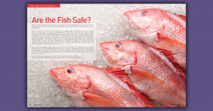 Are the Fish Safe Article